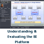 Understanding and Evaluating the BI 