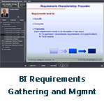 BI Requirements Gathering and 