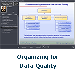 Organizing for Data Quality