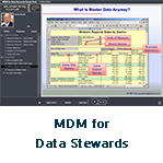 MDM for Data Stewards